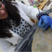 Devolución de pezas restauradas ó Museo de Pontevedra